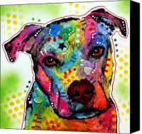 Canine  Canvas Prints - Pity Pitbull Canvas Print by Dean Russo