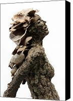 Profile Mixed Media Canvas Prints - Placid Efflorescence A sculpture by Adam Long Canvas Print by Adam Long