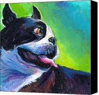 Austin Pet Artist Canvas Prints - Playful Boston Terrier Canvas Print by Svetlana Novikova