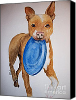 Cannine Canvas Prints - Playful Pittbull Canvas Print by Carol Grimes