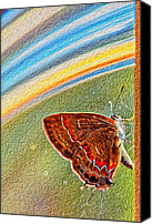 Ark Canvas Prints - Playroom Butterfly Canvas Print by Bill Tiepelman
