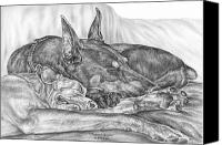 Dobe Canvas Prints - Pleasant Dreams - Doberman Pinscher Dog Art Print Canvas Print by Kelli Swan