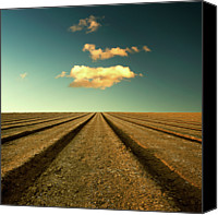 Infinity Canvas Prints - Ploughed Field And Sky Canvas Print by Paul McGee