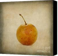 Ups Canvas Prints - Plum vintage look Canvas Print by Bernard Jaubert