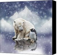 Polar Bear Canvas Prints - Polar Bear Meets Penguin Canvas Print by Ethiriel  Photography