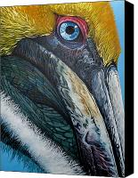Jon Ferrentino Canvas Prints - Pompous Pelican Canvas Print by Jon Ferrentino