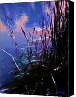 Lilly Pad Canvas Prints - Pond Reeds at Sunset Canvas Print by Joanne Smoley
