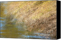 Impressionistic Art Canvas Prints - Pond Reflections Canvas Print by Deborah Benoit