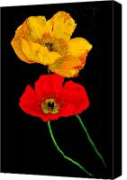 Poppies Canvas Prints - Poppies on Black Canvas Print by Lynn Andrews