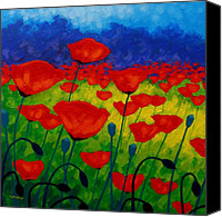 Red Painting Canvas Prints - Poppy Corner II Canvas Print by John  Nolan