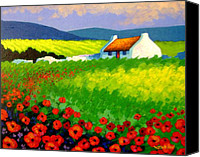 Decorative Art Canvas Prints - Poppy Field - Ireland Canvas Print by John  Nolan