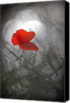 Poppy Digital Art Canvas Prints - Poppy field Canvas Print by Rikard  Olsson