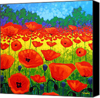 Giclee Trees Canvas Prints - Poppy Field V Canvas Print by John  Nolan