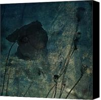 Rural Decay Framed Prints Canvas Prints - Poppy Smudge Canvas Print by Larysa Luciw