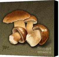Mushroom Drawings Canvas Prints - Porcini Mushrooms Canvas Print by Marshall Robinson