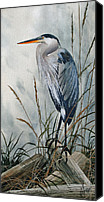 Heron  By James Williamson Painting Canvas Prints - Portrait in the Wild Canvas Print by James Williamson