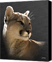 Mountain Lion Digital Art Canvas Prints - Portrait Of A Cat Canvas Print by Bill Stephens