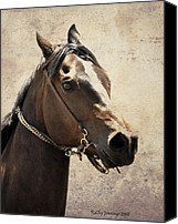 Horse Photographs Canvas Prints - Portrait Of A Horse Series IV Canvas Print by Kathy Jennings