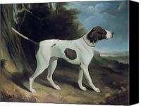 Dogs Painting Canvas Prints - Portrait of a liver and white pointer Canvas Print by George Garrard