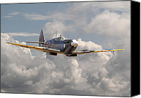 Raf Canvas Prints - Portrait of an Icon Canvas Print by Pat Speirs