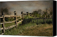 Fences Canvas Prints - Post N Picket Canvas Print by Robin-lee Vieira