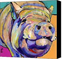 Pig Painting Canvas Prints - Potbelly Canvas Print by Pat Saunders-White