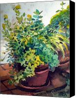 Potted Plants Painting Canvas Prints - Potted Herbs Canvas Print by Donald Maier