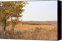 Autumn Scenes Canvas Prints - Prairie Autumn Canvas Print by Jim Sauchyn