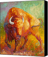 Bison Canvas Prints - Prarie Gold Canvas Print by Marion Rose