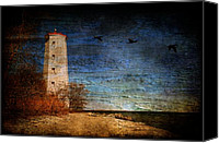 Black Birds Canvas Prints - Presquile Lighthouse Canvas Print by Lois Bryan