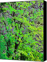Maple Trees Digital Art Canvas Prints - Pristine Country Green Canvas Print by Will Borden