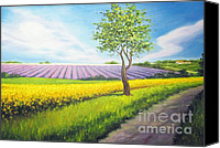 Diane Hewitt Canvas Prints - Provence Farm Road Canvas Print by Diane Hewitt