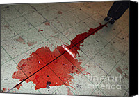 Spilled Wine Canvas Prints - Puddle of red wine on the floor Canvas Print by Matthias Hauser
