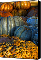 New Hampshire Canvas Prints - Pumpkin Harvest Canvas Print by Joann Vitali