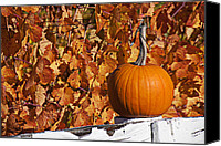 Fences Canvas Prints - Pumpkin on white fence post Canvas Print by Garry Gay