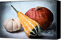 Photoart Canvas Prints - Pumpkins Canvas Print by Angela Doelling AD DESIGN Photo and PhotoArt