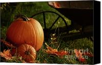Halloween Scene Canvas Prints - Pumpkins in the grass Canvas Print by Sandra Cunningham