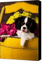 Innocence Canvas Prints - Puppy in yellow bucket  Canvas Print by Garry Gay