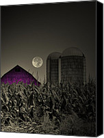 Country Scenes Photo Canvas Prints - Purple Barn Moon Canvas Print by Emily Stauring