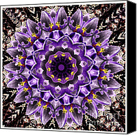 Renata Ratajczyk Canvas Prints - Purple Crocuses mandala  Canvas Print by Renata Ratajczyk