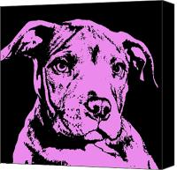 Pity Mixed Media Canvas Prints - Purple Little Pittie Canvas Print by Dean Russo