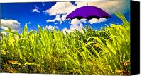 Whimsical Canvas Prints - Purple Umbrella in a field of corn Canvas Print by Bob Orsillo