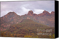 Prairie Photography Canvas Prints - Pusch Ridge Tucson Arizona Canvas Print by Donna Van Vlack
