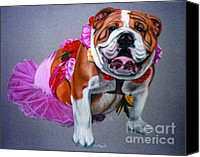 Bull Pastels Canvas Prints - Putting on the Dog Canvas Print by Deb LaFogg-Docherty