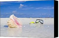 Conch Shells Canvas Prints - Queen Conch Shell And Snorkel Mask Canvas Print by Mike Theiss