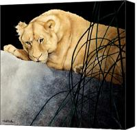 Lion Painting Canvas Prints - Queen of the Jungle... Canvas Print by Will Bullas