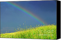 Thomas Canvas Prints - Rainbow over Pasture Field Canvas Print by Thomas R Fletcher