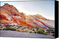 Valley Of Fire Canvas Prints - Rainbow Rocks At Valley Of Fire, Nevada, Usa Canvas Print by Copyright Sarah Wright