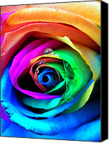 Drops Canvas Prints - Rainbow Rose Canvas Print by Juergen Weiss