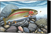 Fish Art Canvas Prints - Rainbow Trout Stream Canvas Print by JQ Licensing